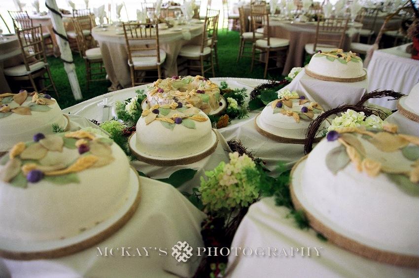 rustic lakeside wedding with multiple wedding cakes