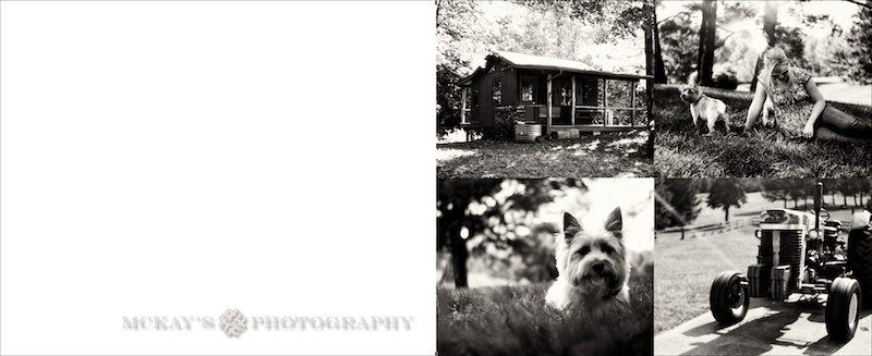 top Finger Lakes Wedding Photographer