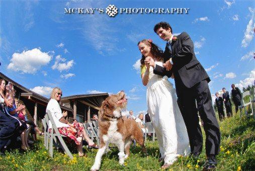 Destination Wedding Photographer Heather McKay
